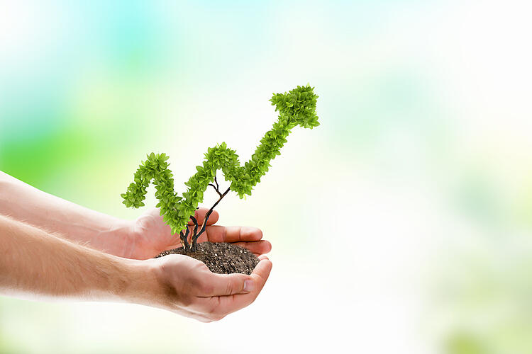 buyer's journey - nurture leads - holding plant shaped like an arrow